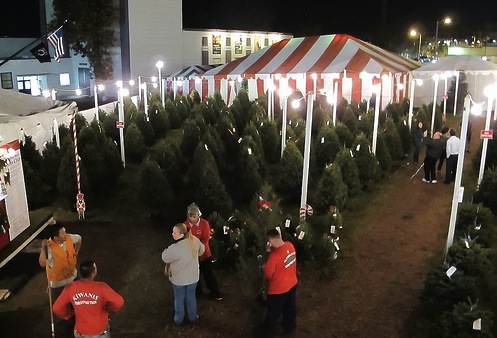 Where to Get Your Christmas Trees and Holiday Decorations in Los ...